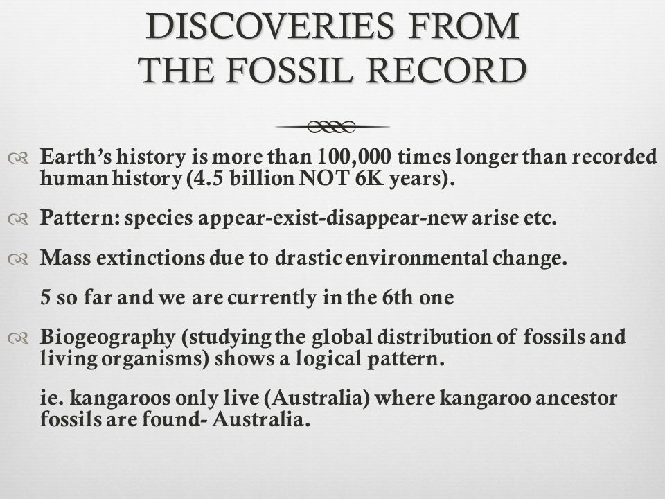 DISCOVERIES FROM THE FOSSIL RECORD