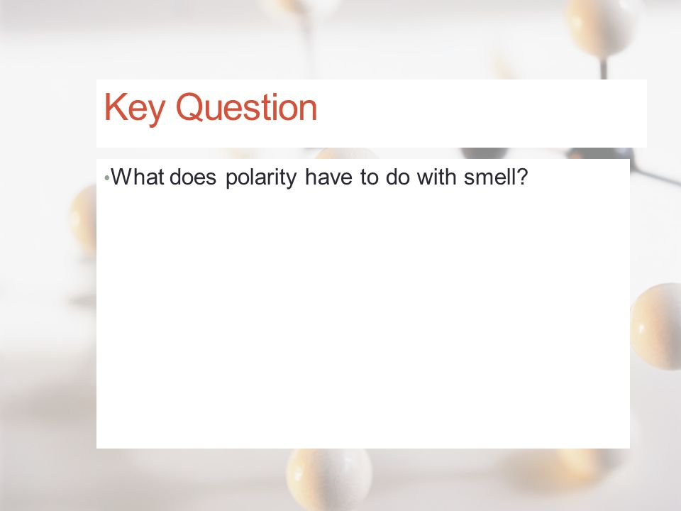 Key Question What does polarity have to do with smell