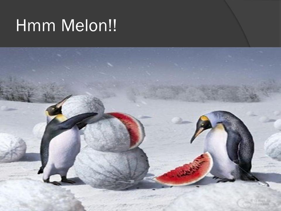 Hmm Melon!!