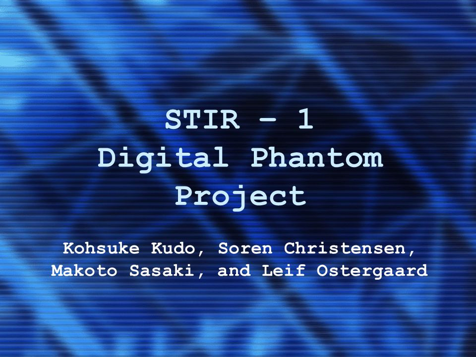 STIR – 1 Digital Phantom Project