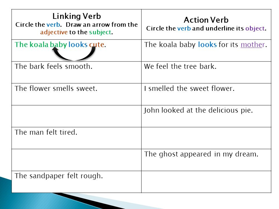 Linking Verb Action Verb