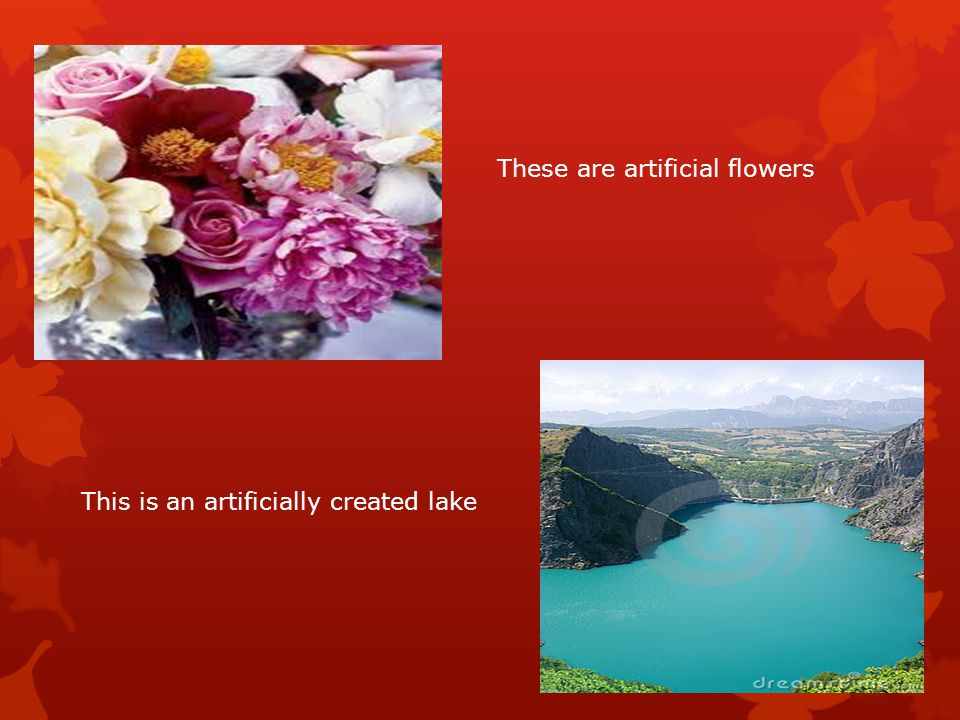 These are artificial flowers