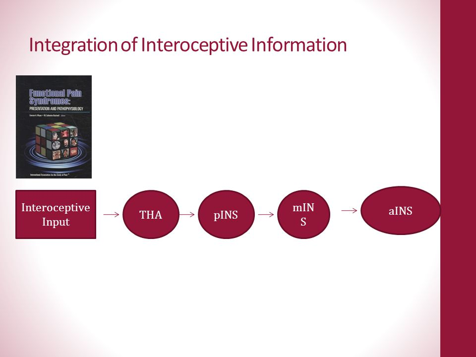 Integration of Interoceptive Information