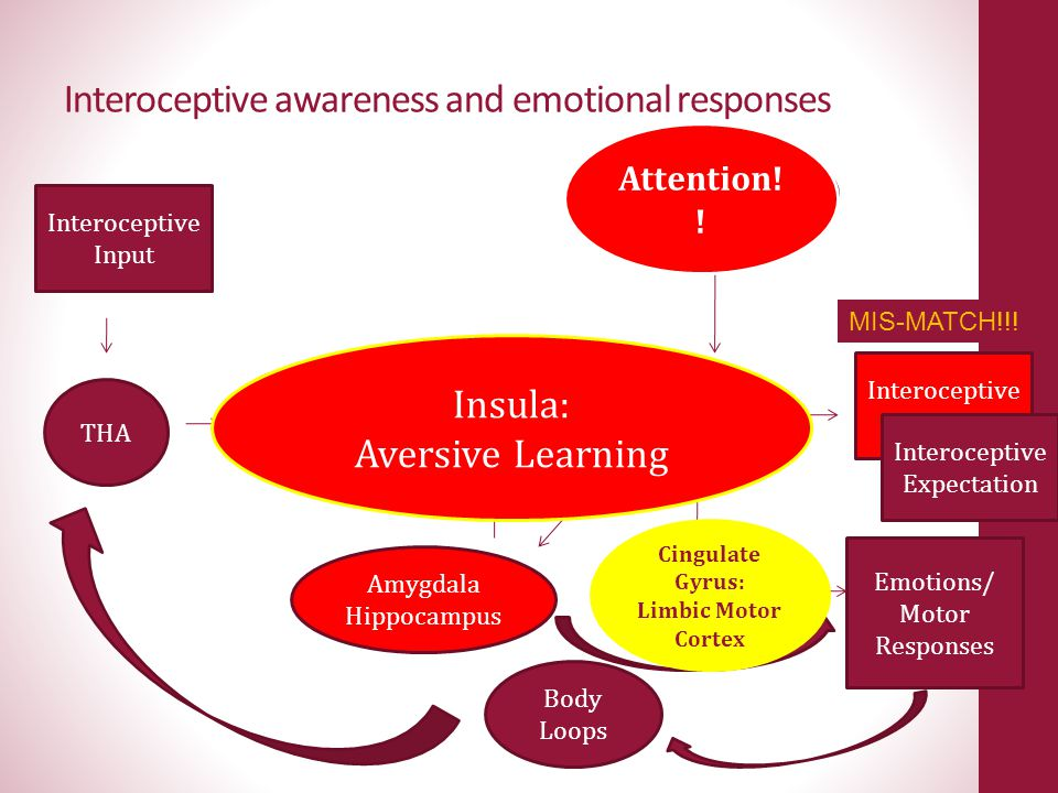 Interoceptive awareness and emotional responses