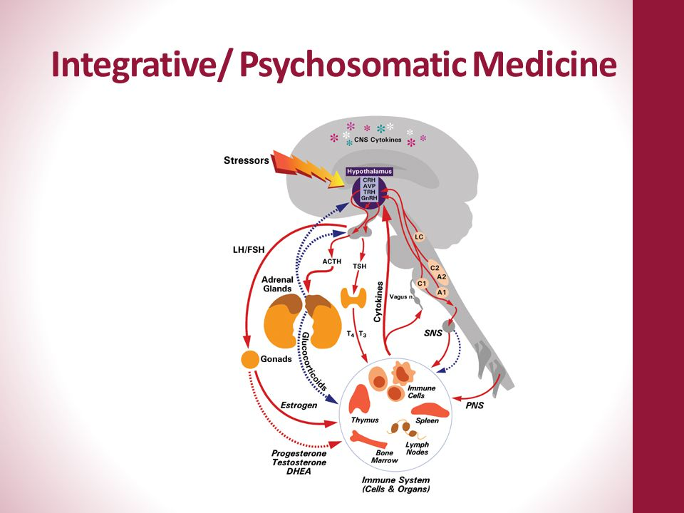 Integrative/ Psychosomatic Medicine