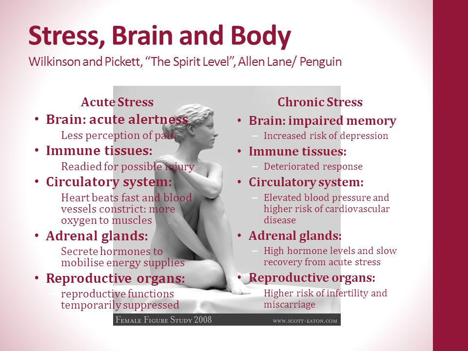 Stress, Brain and Body Wilkinson and Pickett, The Spirit Level , Allen Lane/ Penguin