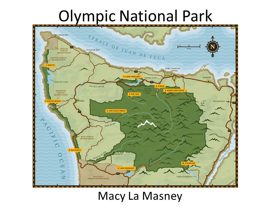 Olympic National Park Macy La Masney