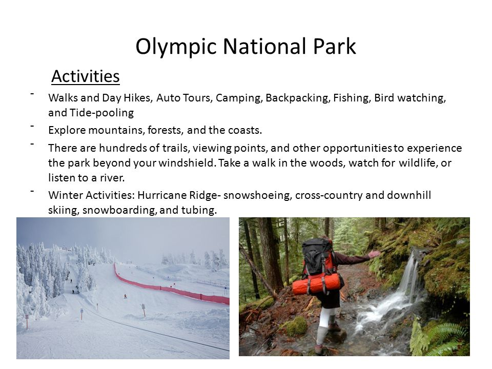 Olympic National Park Activities