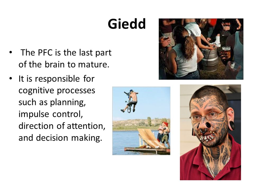 Giedd The PFC is the last part of the brain to mature.
