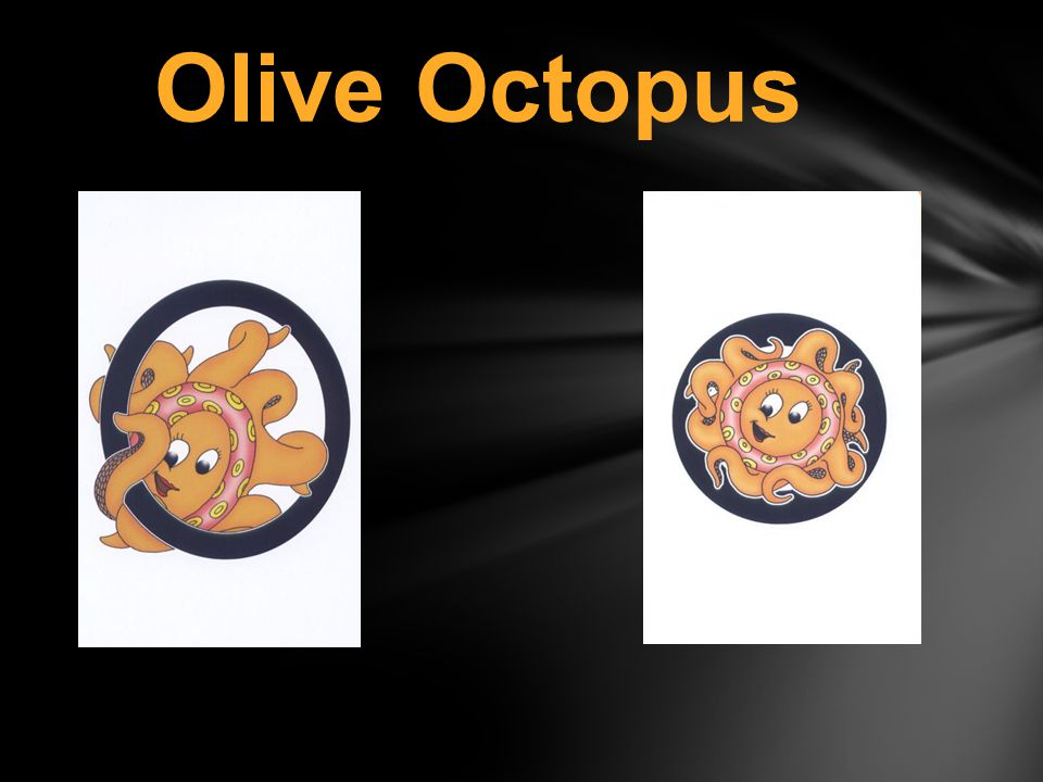 Olive Octopus