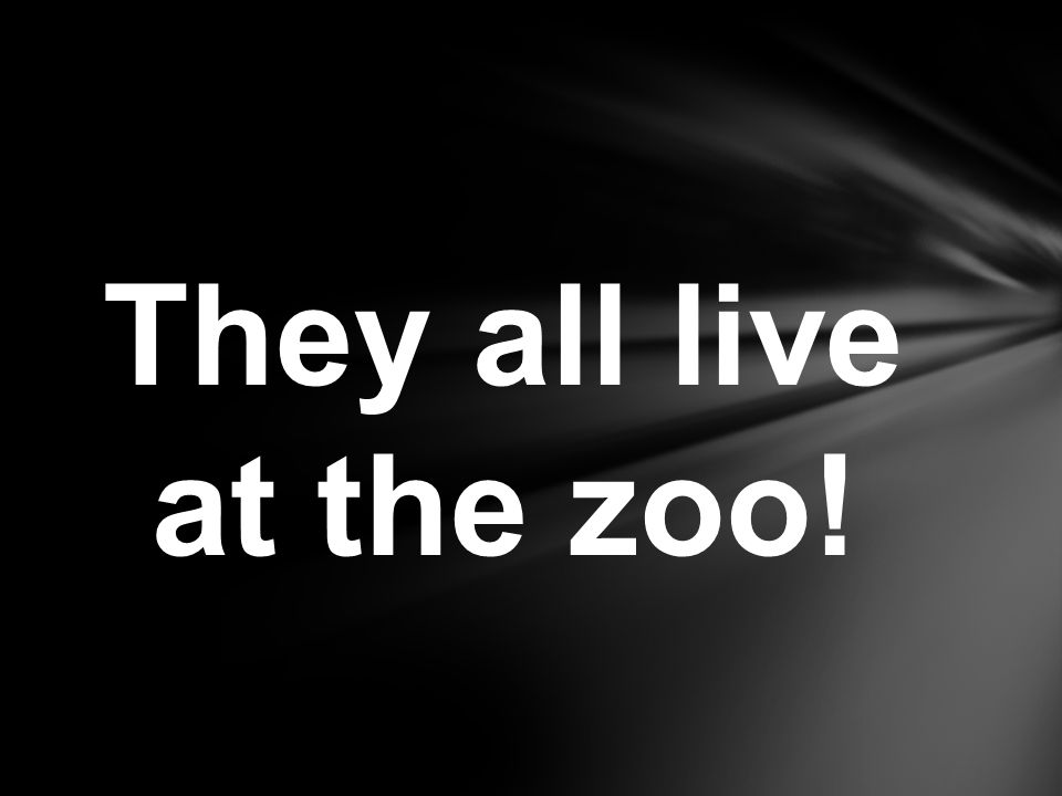 They all live at the zoo!