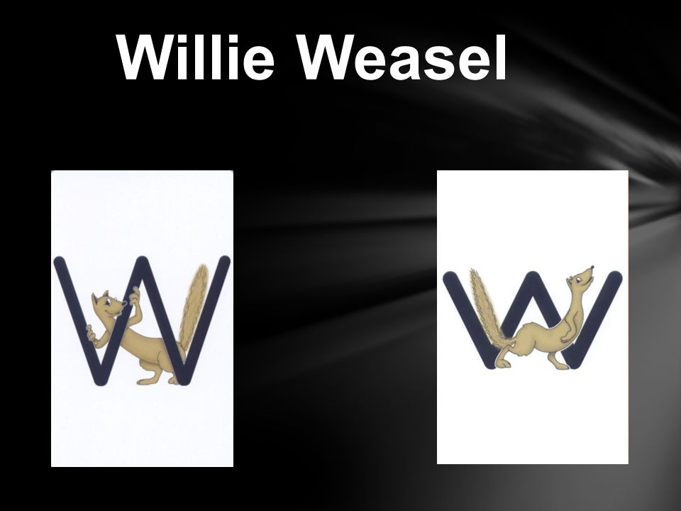 Willie Weasel