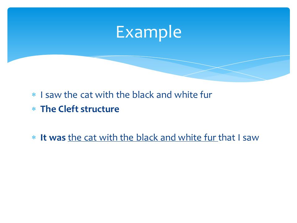 Example I saw the cat with the black and white fur The Cleft structure