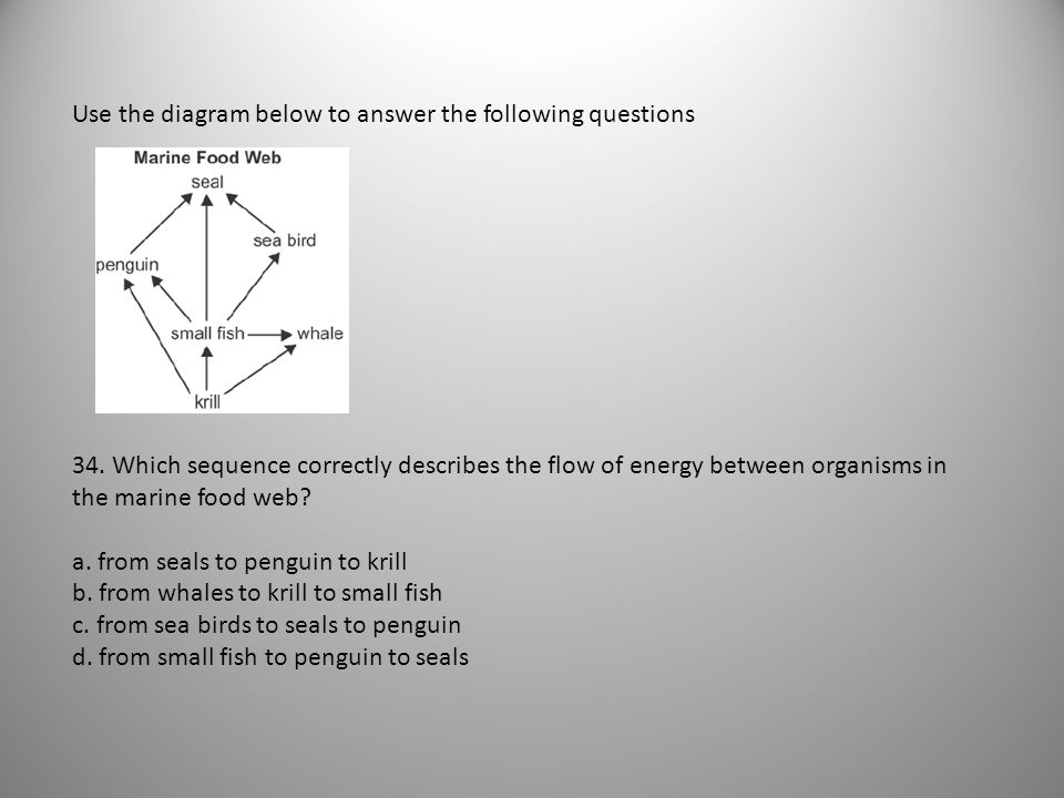 Use the diagram below to answer the following questions