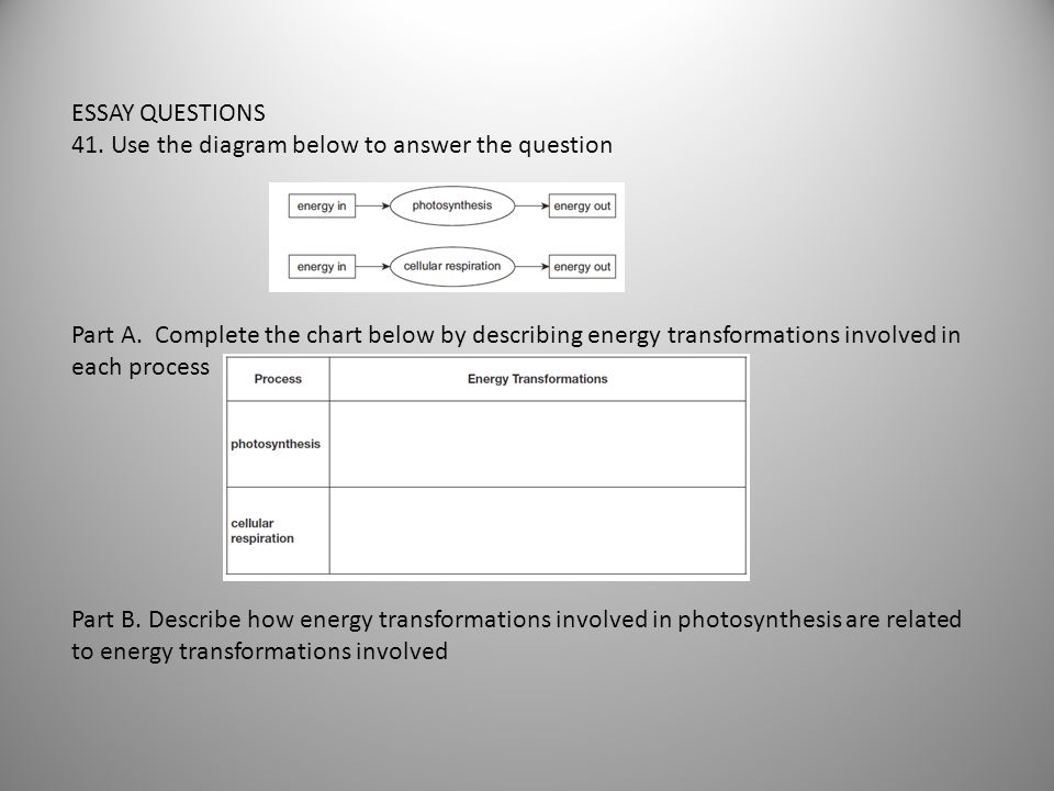 ESSAY QUESTIONS 41. Use the diagram below to answer the question.
