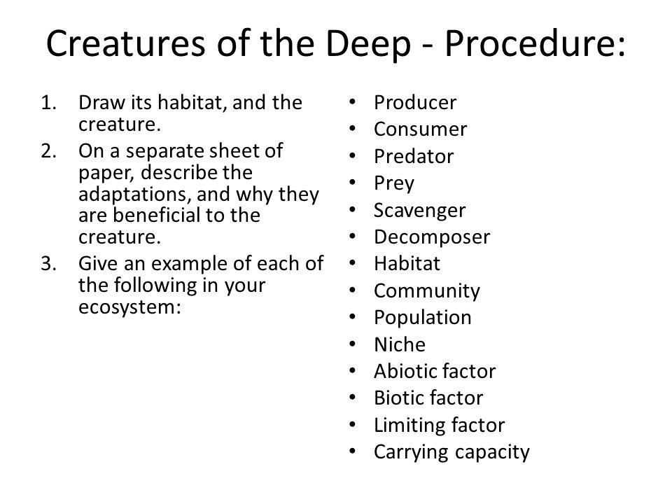 Creatures of the Deep - Procedure: