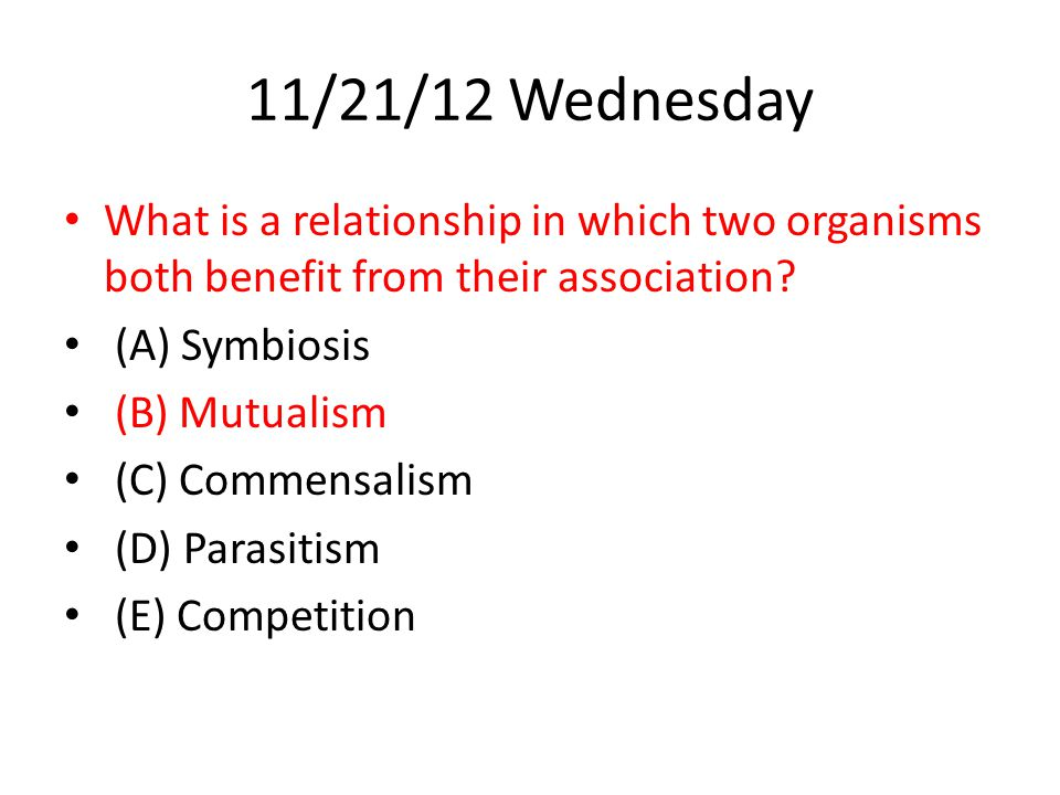 11/21/12 Wednesday What is a relationship in which two organisms both benefit from their association
