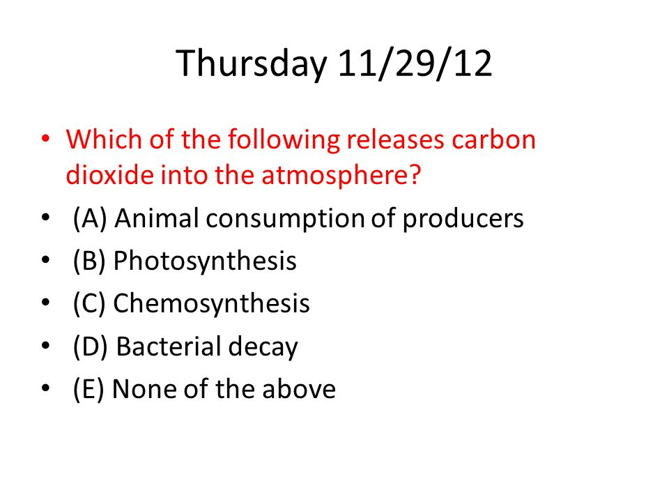 Thursday 11/29/12 Which of the following releases carbon dioxide into the atmosphere (A) Animal consumption of producers.