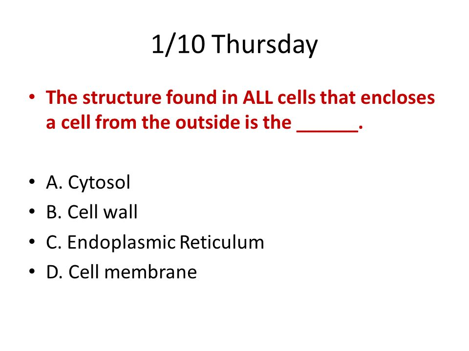 1/10 Thursday The structure found in ALL cells that encloses a cell from the outside is the ______.
