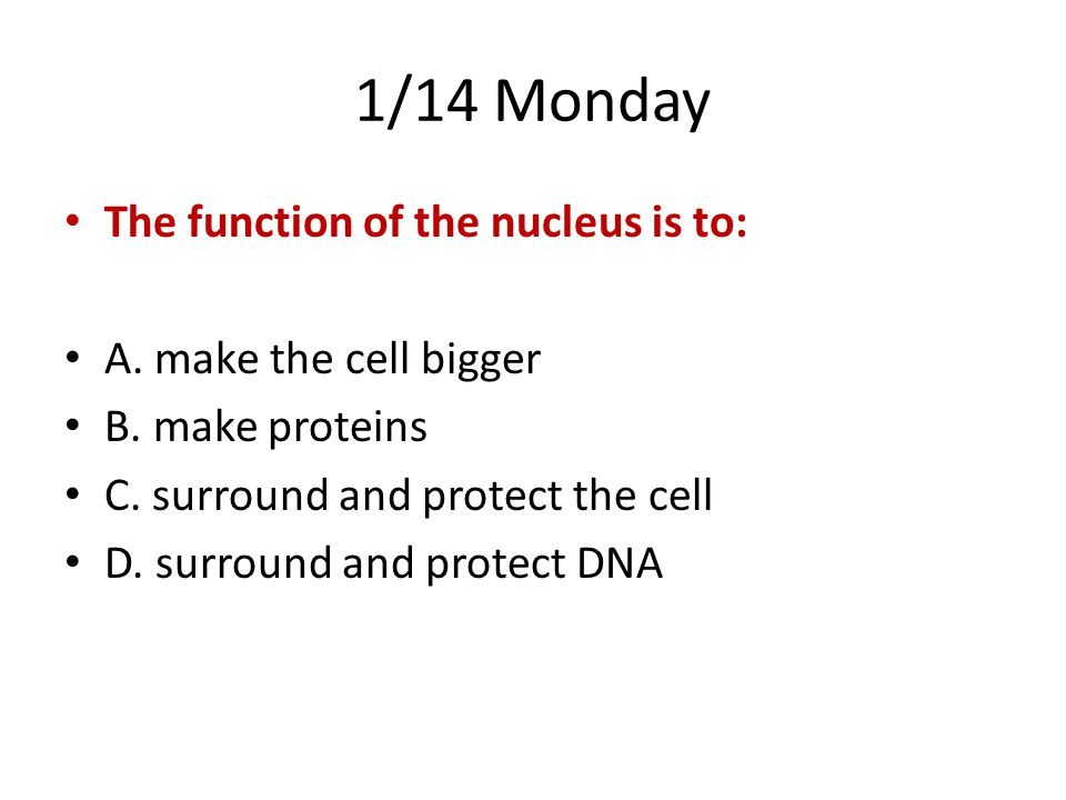 1/14 Monday The function of the nucleus is to: A. make the cell bigger