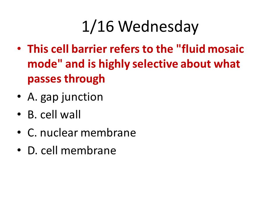 1/16 Wednesday This cell barrier refers to the fluid mosaic mode and is highly selective about what passes through.