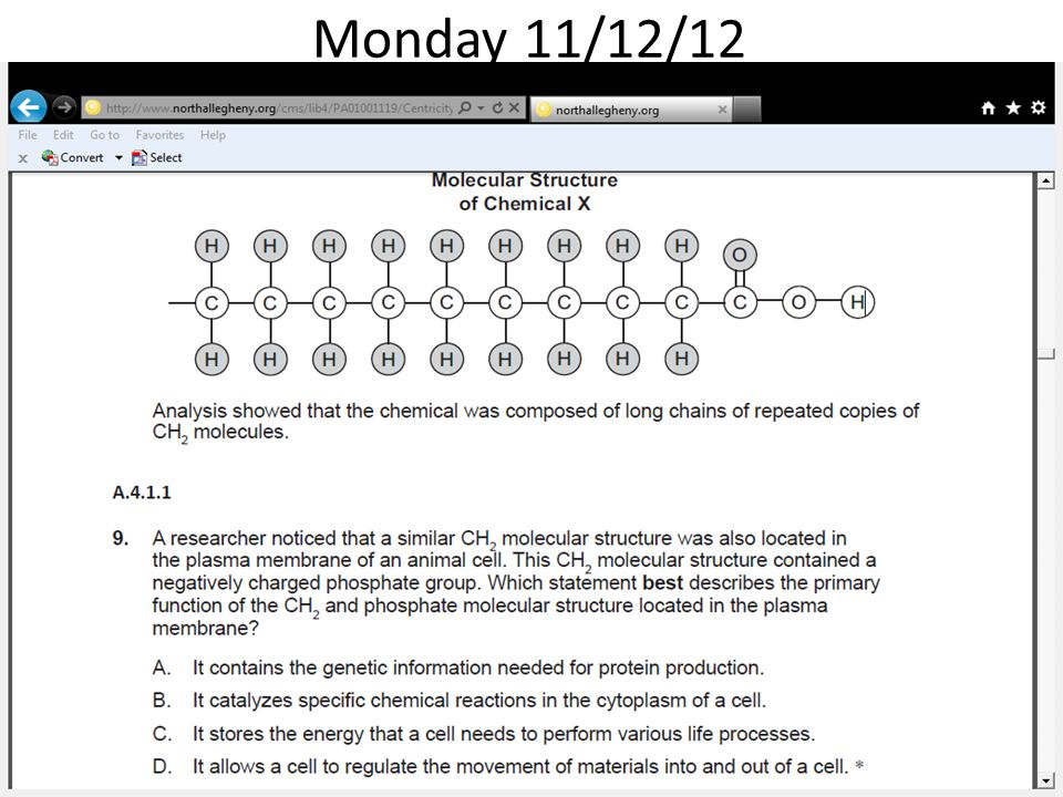 Monday 11/12/12 A scientist formed Chemical X in a laboratory. The material was then analyzed by other.