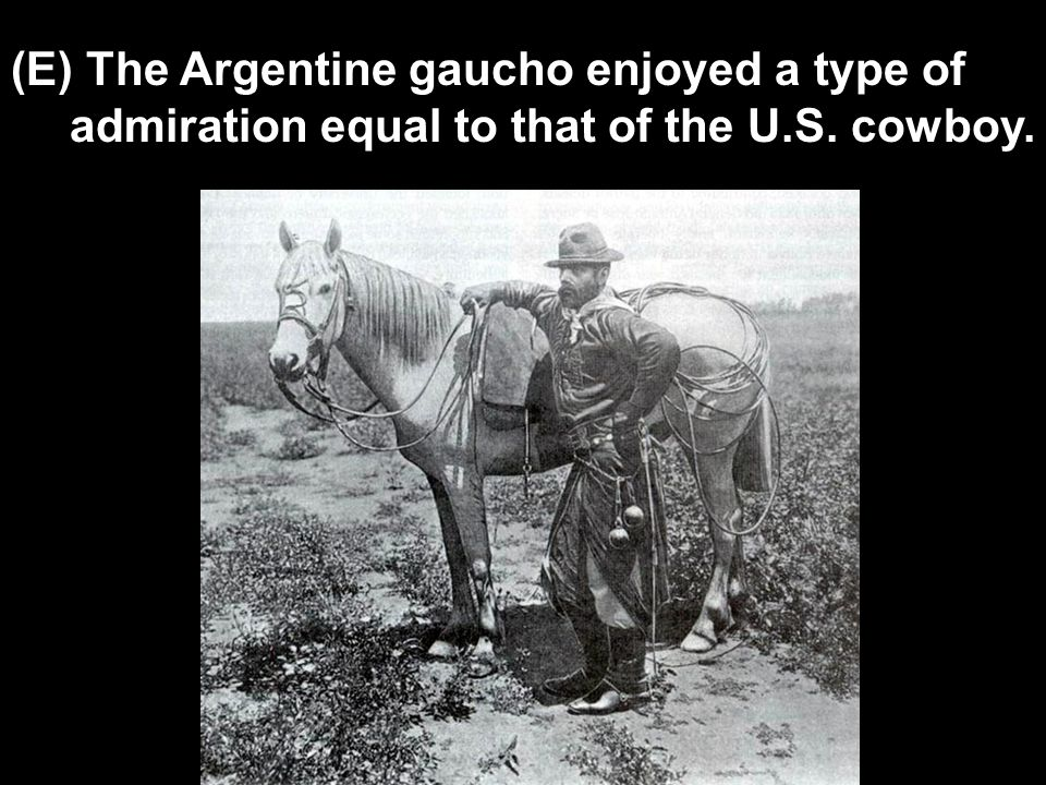 (E) The Argentine gaucho enjoyed a type of admiration equal to that of the U.S. cowboy.