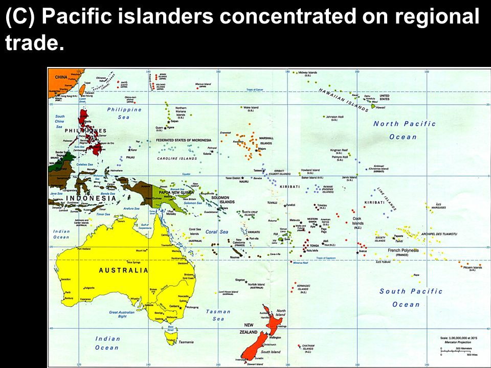 (C) Pacific islanders concentrated on regional trade.
