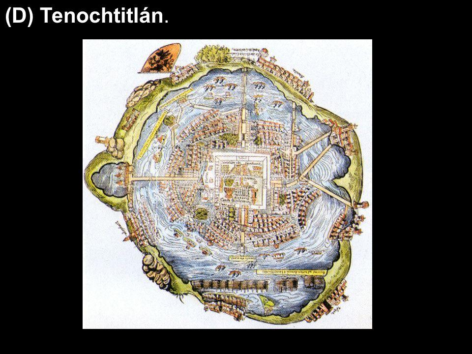 (D) Tenochtitlán.