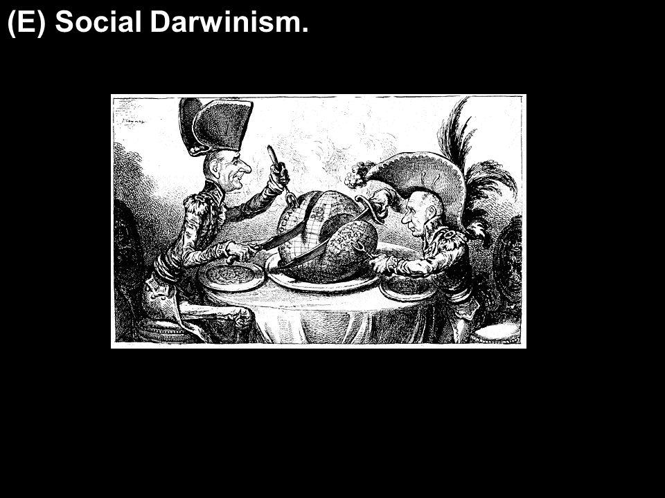 (E) Social Darwinism.