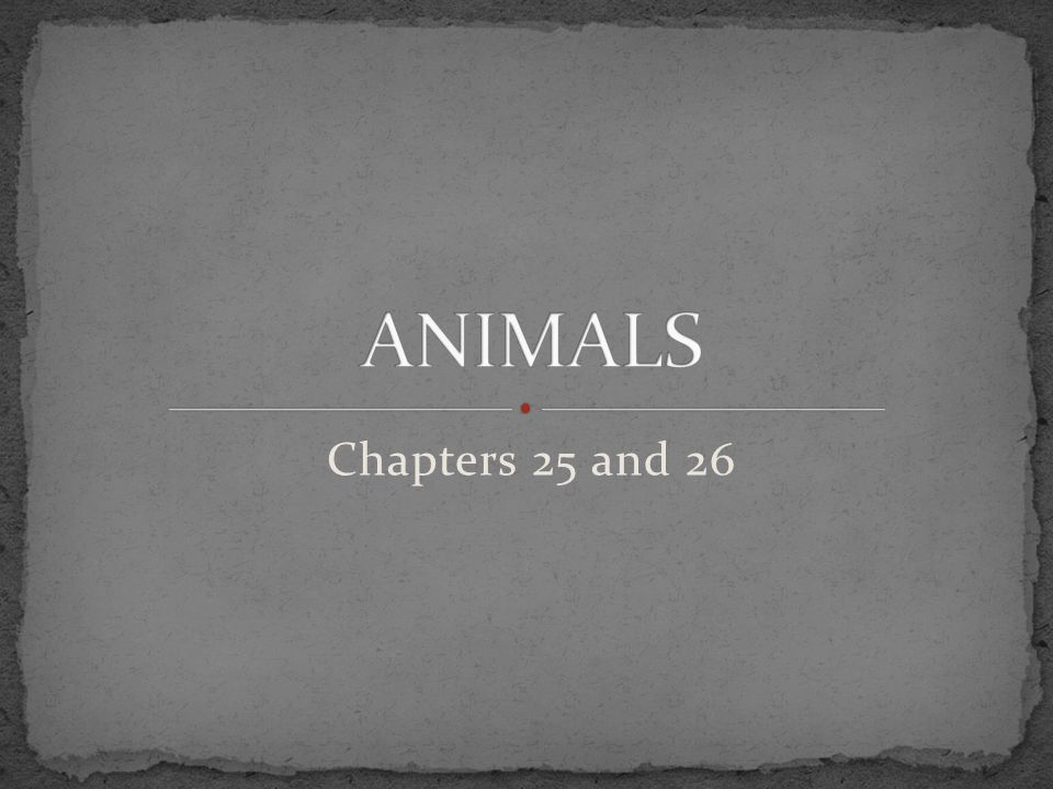 ANIMALS Chapters 25 and 26