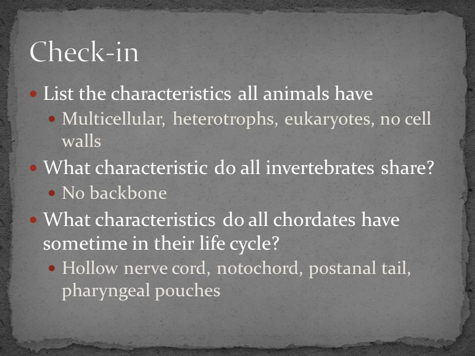 Check-in List the characteristics all animals have
