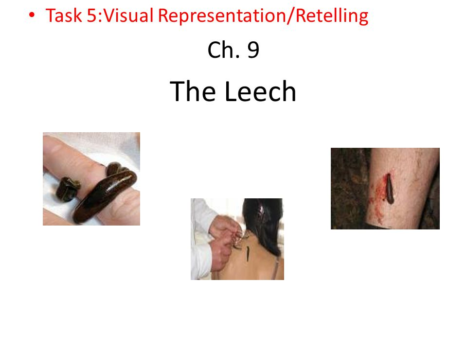 Task 5:Visual Representation/Retelling