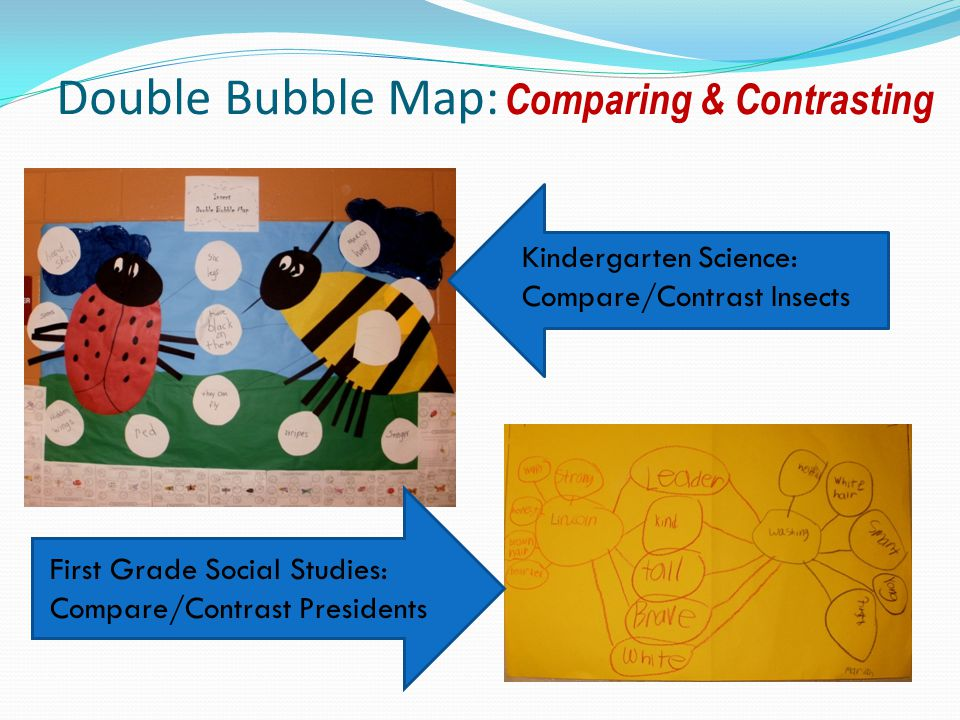 Double Bubble Map: Comparing & Contrasting