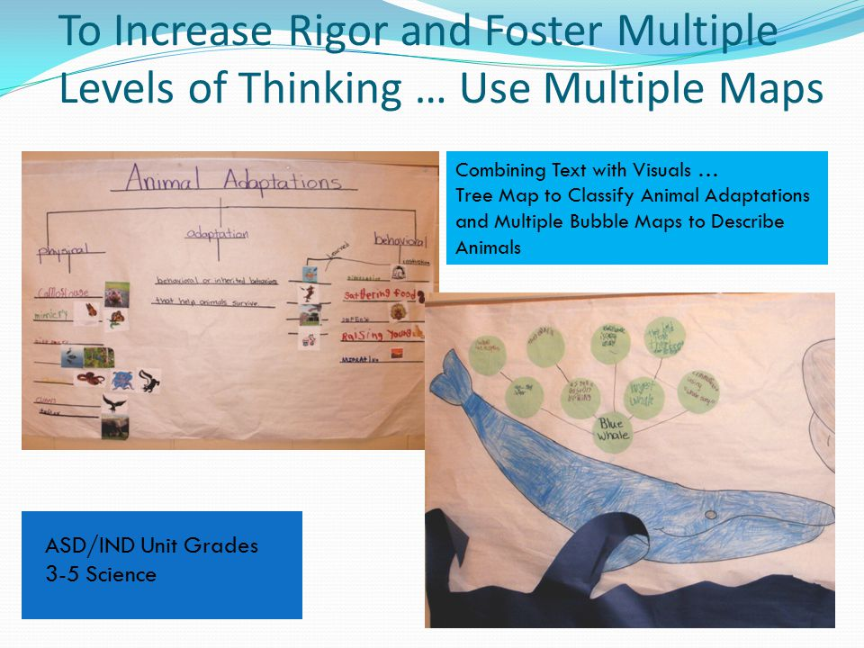 To Increase Rigor and Foster Multiple Levels of Thinking … Use Multiple Maps