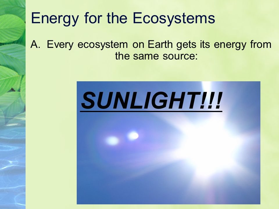 Energy for the Ecosystems