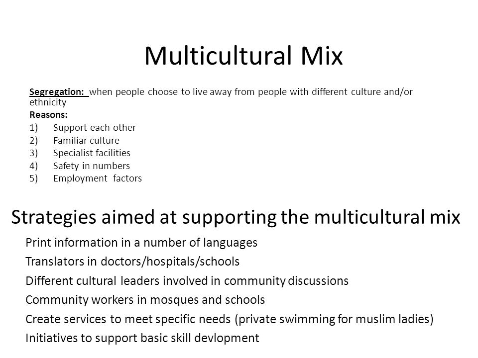 Strategies aimed at supporting the multicultural mix