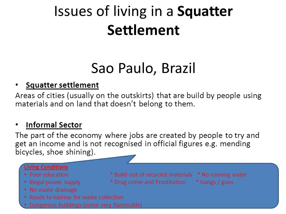 Issues of living in a Squatter Settlement Sao Paulo, Brazil