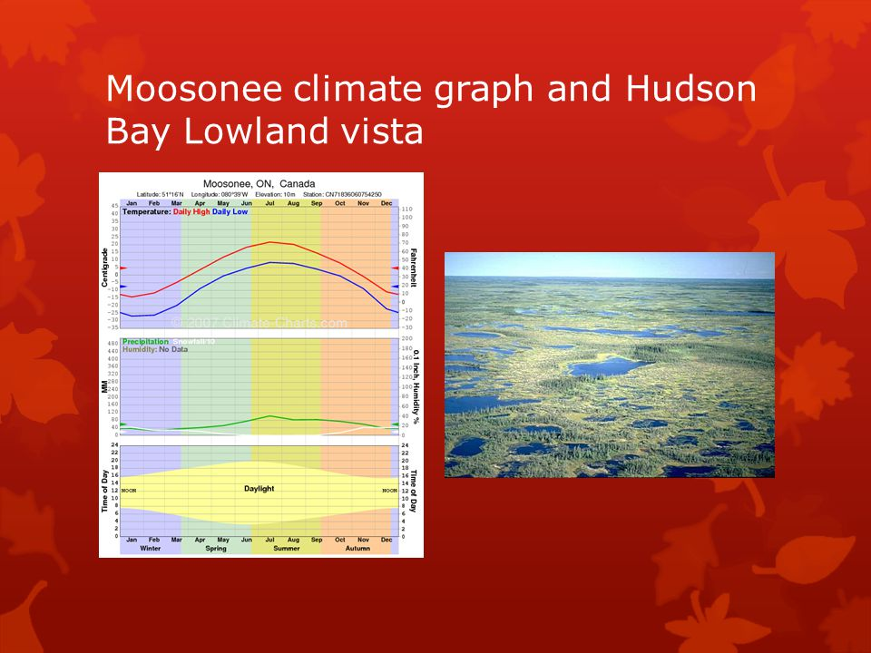 Moosonee climate graph and Hudson Bay Lowland vista