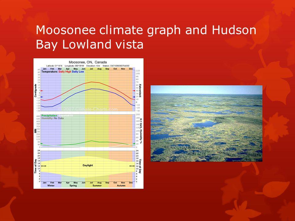 Moosonee climate graph and Hudson Bay Lowland vista
