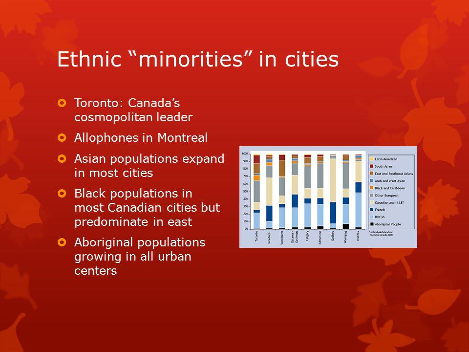 Ethnic minorities in cities