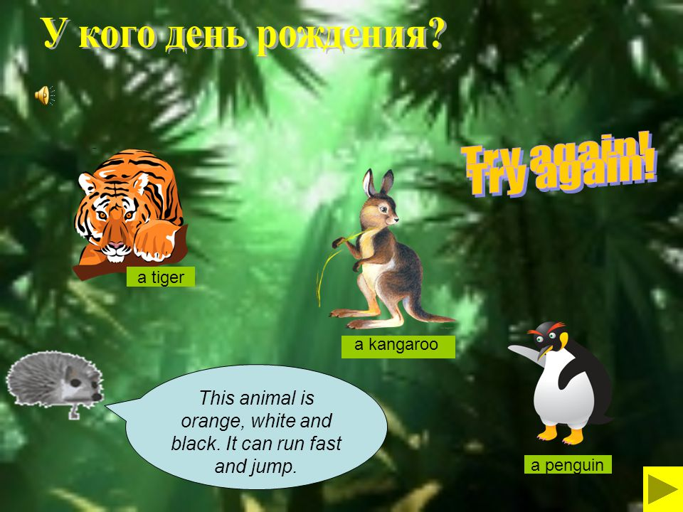 This animal is orange, white and black. It can run fast and jump.