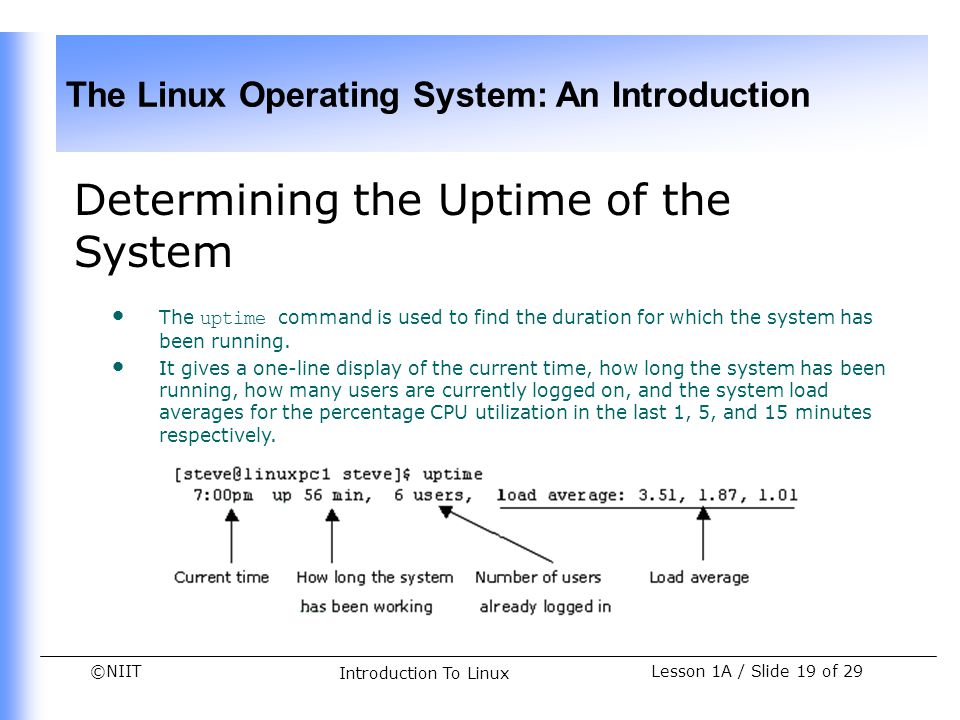 Determining the Uptime of the System