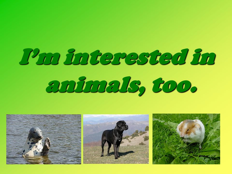 I'm interested in animals, too.