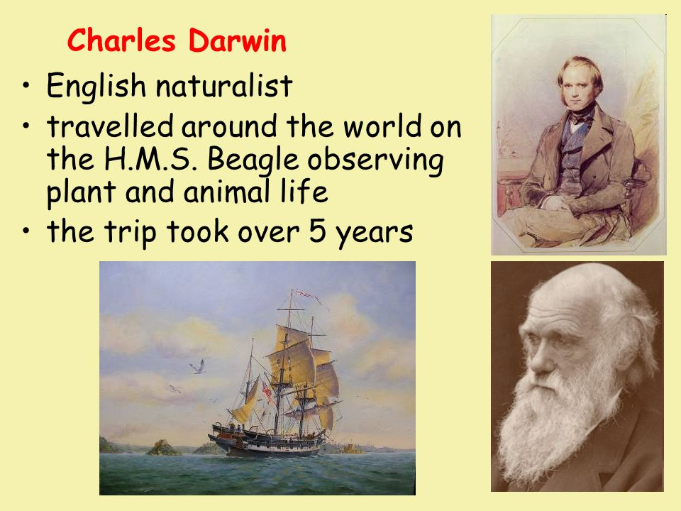 Charles Darwin English naturalist. travelled around the world on the H.M.S. Beagle observing plant and animal life.