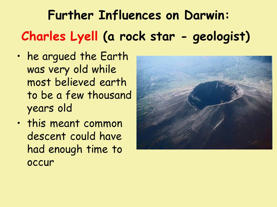 Further Influences on Darwin: