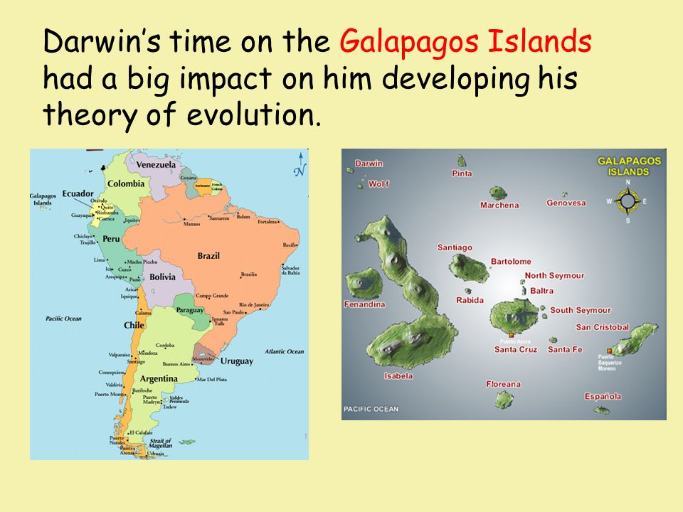 Darwin's time on the Galapagos Islands had a big impact on him developing his theory of evolution.