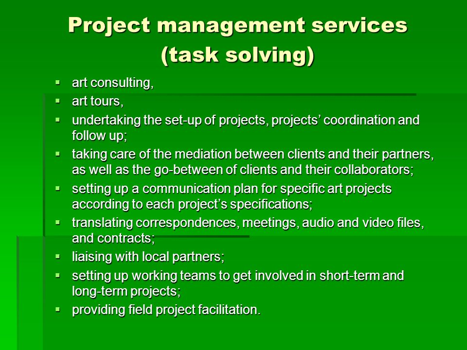 Project management services (task solving)