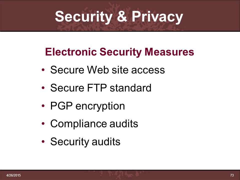 Electronic Security Measures