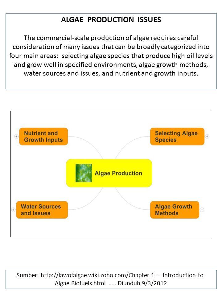 ALGAE PRODUCTION ISSUES